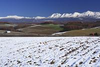 冠雪の十勝岳連峰