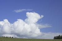 入道雲と草原