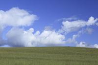 草原と雲草原と雲