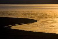 水際の風景