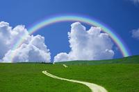 草原の中の道と虹