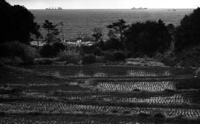 三浦半島・相模湾を望む