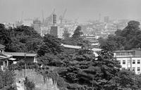 横浜・三ツ沢