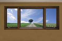 窓から1本木