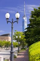 百道浜の街灯と福岡タワー