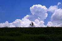 夏空と自転車