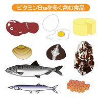ビタミンB12を多く含む食品