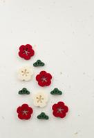 梅の花イメージ