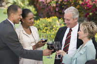 Two couples toasting outdoors