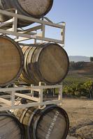 Wine barrels in vineyard