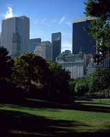 セントラルパークとビル街
