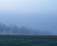 霧立ち込める大地