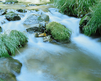 花背峠の川
