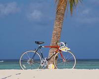 砂浜の自転車