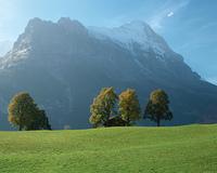 草原と山脈