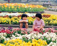 花壇の中の子供