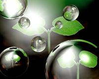 エコロジーイメージ(CG)