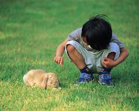 男の子とウサギ