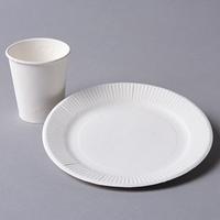 紙コップと紙皿(クラフト)