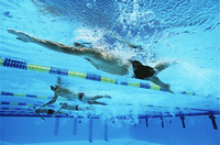 Male swimmers racing in pool, underwater view
