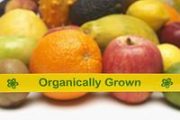 Organically grown fruits