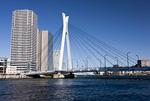 隅田川と中央大橋