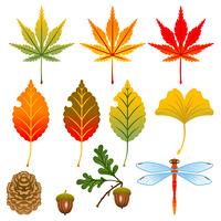 秋の木の葉セット