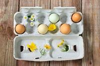 オーガニック卵と野の花