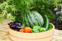 たらいで冷やした真夏の野菜ともみじ