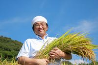 農業 豊作の稲穂を抱える農夫