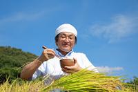 農業 豊作の稲穂とご飯を食べる農夫