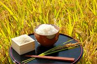 稲穂の田んぼと白米のご飯とお膳