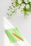 観葉植物とノート