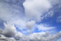 青空と白い雲