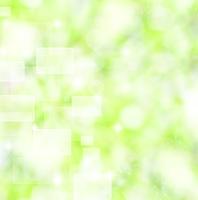 黄緑の背景