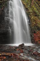 紅葉の奥入瀬渓流の滝