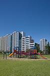 新興住宅地の公園