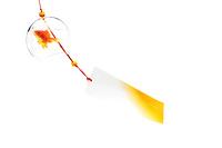 揺れるガラスの風鈴と金魚