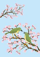 メジロと桜/縦位置