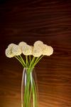 花瓶に挿してある花