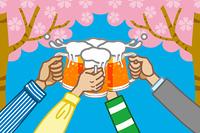 ビールで乾杯/花見