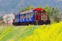 春爛漫トロッコ列車