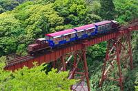 新緑の立野橋りょうを渡るトロッコ列車