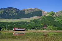 田んぼに映る列車と阿蘇外輪山