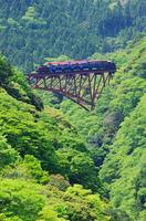 新緑とトロッコ列車