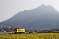 由布岳と黄色い列車