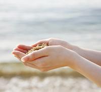 海の砂を拾う手