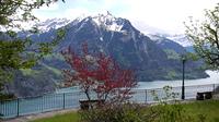 ルツェルン湖を見下ろす展望台