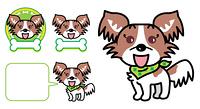 パピヨン 犬 子犬