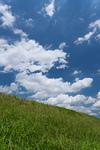 緑の土手と青空
